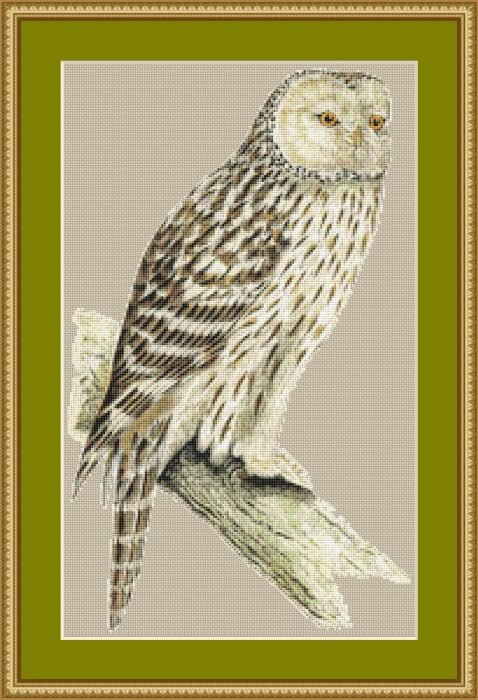 Vintage Owl Cross Stitch